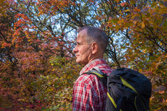 Portrait of  a man with backpack in autumn forest. Stock Images