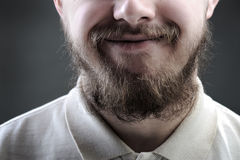 Portrait of man with beard Stock Photos