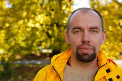 Portrait of man with beard in autumn park stock images