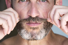 Portrait of a man with beard Stock Images