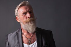 Portrait of a man with beard Royalty Free Stock Images
