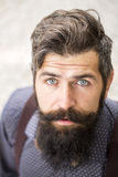 Portrait of man with beard Royalty Free Stock Photo