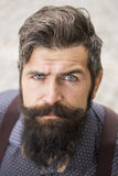 Portrait of man with beard Royalty Free Stock Photography