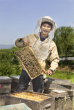 Portrait of a man beekeeper Royalty Free Stock Photos