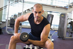 Portrait of man exercising with dumbbell in gym Stock Photography