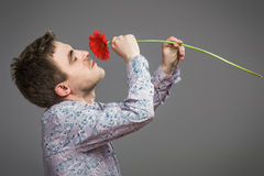 Portrait of man holding red flower. On grey background Stock Image