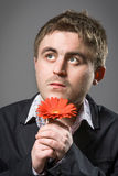 Portrait of man holding red flower. Isolated on grey background Royalty Free Stock Photography