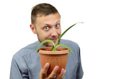 Portrait man with a home flower in a pot Royalty Free Stock Photo