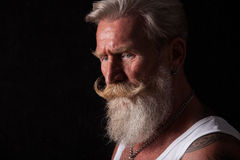 Portrait of man with long white beard Royalty Free Stock Photos