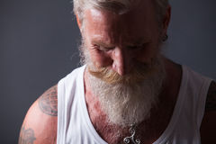 Portrait of man with long white beard Stock Images