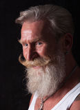 Portrait of man with long white beard Royalty Free Stock Photo