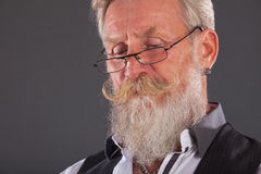 Portrait of man with long white beard Royalty Free Stock Images