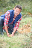Portrait of man picking mushrooms Royalty Free Stock Image