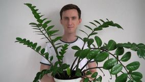 Portrait of a man with a plant. In his hands stock video footage