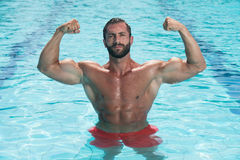 Portrait Of A Man Posing In Swimming Pool Stock Image
