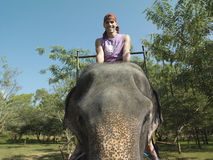 Portrait Of Man Riding On Elephant Stock Photos