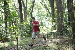 Man running in the woods. Portrait of man running in the woods wearing red tshirt Royalty Free Stock Photo