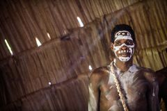 Portrait of a man from the tribe of Asmat people on Asmat Welcoming ceremony. Stock Image