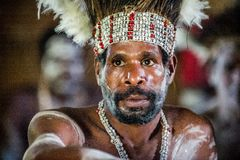 Portrait of a man from the tribe of Asmat people on Asmat Welcoming ceremony. Stock Photo