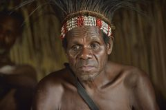 Portrait of a man from the tribe of Asmat people. Stock Photography
