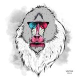 Portrait of the Mandrill in the colored glasses. Think different. Vector illustration. Portrait of the Mandrill in the colored glasses. Think different. A Stock Image