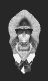 Portrait of Mandrill in suit.