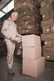 Portrait of manual worker in warehouse Royalty Free Stock Photo