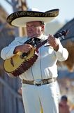 Portrait of a Mariachi Player Performing with a Vihuela for a Beach Audience Royalty Free Stock Photo