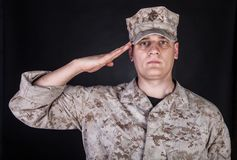 Portrait of marine saluting and looking at camera Royalty Free Stock Photography