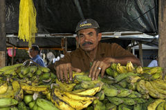 Portrait market vendor and plantains, city Recife, Stock Photography