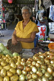 Portrait market vendor and vegetables, city Recife Stock Image
