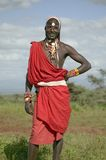 Portrait of Masai Warrior in traditional red toga at Lewa Wildlife Conservancy in North Kenya, Africa Stock Photography
