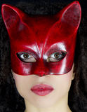 Portrait of a masked woman. Royalty Free Stock Image