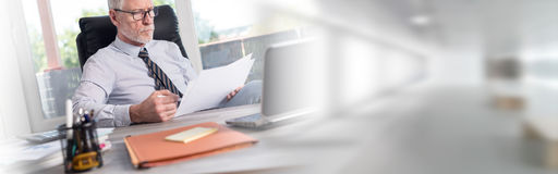 Portrait of mature businessman checking documents. In office royalty free stock photo