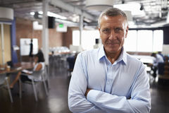 Portrait Of Mature Businessman In Modern Open Plan Office Stock Photos