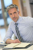 Portrait of mature businessman working at office Royalty Free Stock Photos