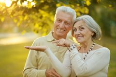 Portrait of Mature couple Stock Photography