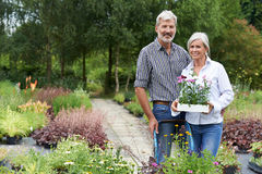 Portrait Of Mature Couple Shopping At Garden Center Stock Image