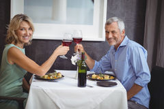 Portrait of mature couple toasting their glasses of red wine Stock Photos