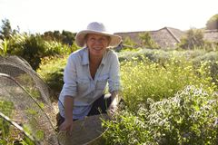 Portrait Of Mature Woman Working On Community Allotment royalty free stock photo