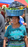 Portrait of a Mayan woman. Stock Photos