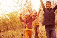 Portrait of medium group children. Medium group of children playing in fall leaves in the park stock photo