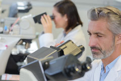 Portrait mid adult male scientist using microscope in laboratory Royalty Free Stock Photo