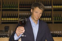 Portrait of a mid adult man holding a wine glass. Portrait of a mid adult man in a wine bar holding a wine glass and smiling Royalty Free Stock Photos