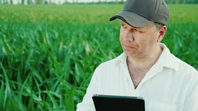 Portrait of a middle-aged farmer. Works on the field of corn, uses a digital tablet stock video footage