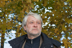 Portrait of middle-aged man in autumn day. Royalty Free Stock Image