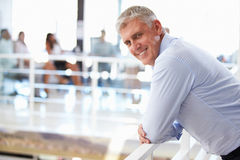 Portrait of middle aged man in office Royalty Free Stock Photos