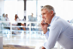 Portrait of middle aged man in office using smart phone,phone Stock Photography