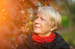 Portrait of a middle-aged woman. Royalty Free Stock Image