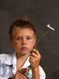 Portrait mit einer Kamille Lizenzfreies Stockfoto
